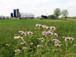 Lancaster Farm Stay
