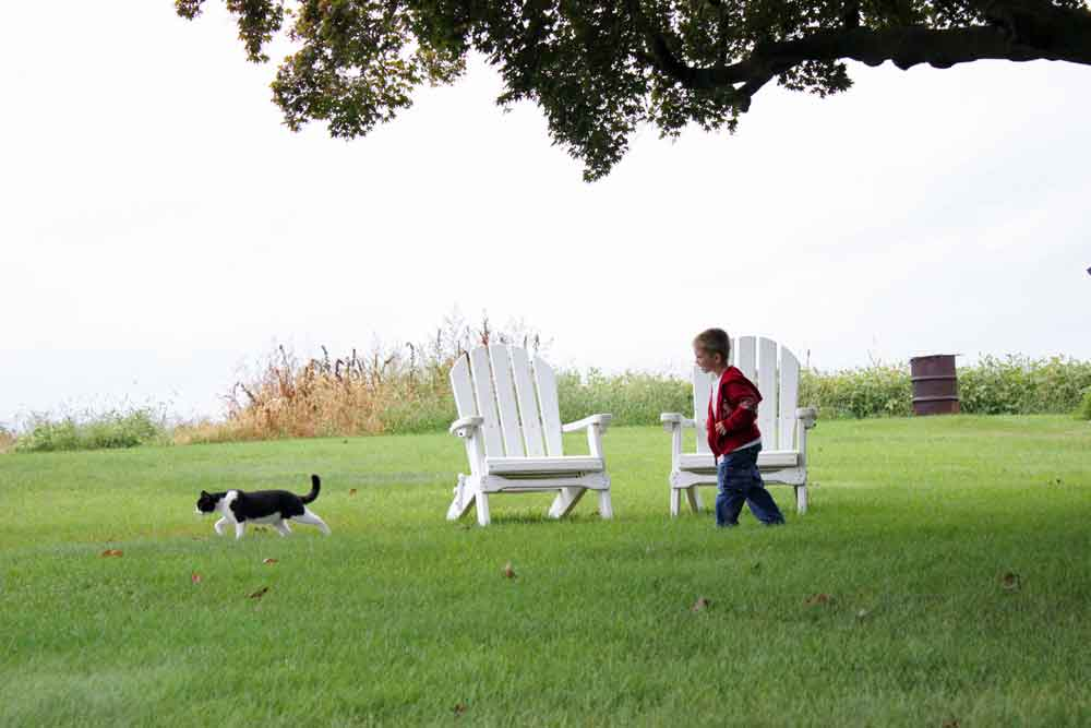 Lancaster PA interactive farmstay for kid