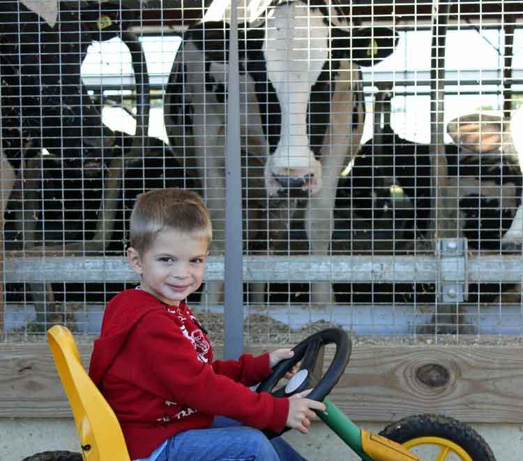 fun on the farm for kids